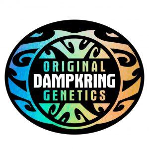 Original Dampkring Genetics